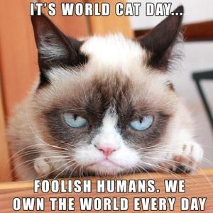 Grumpy Cat_World Cat Day